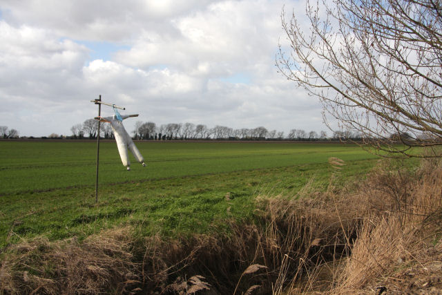 Headless scarecrow by Common Gate Drove