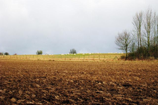 Fields near Small Hythe