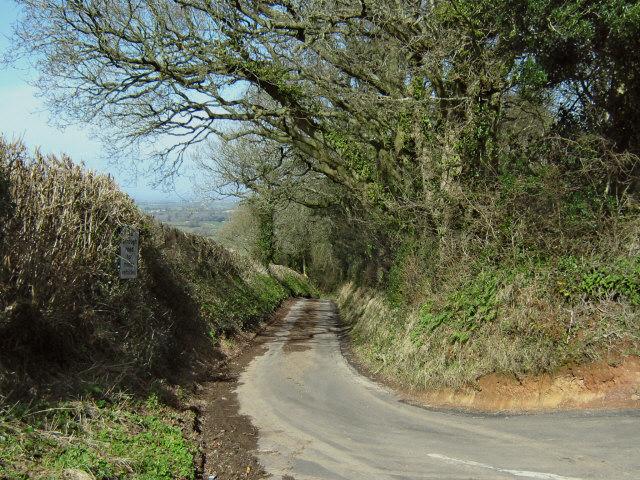 Narrow muddy lane