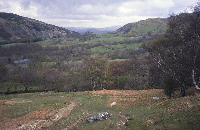 Hillside south of Ty-nant