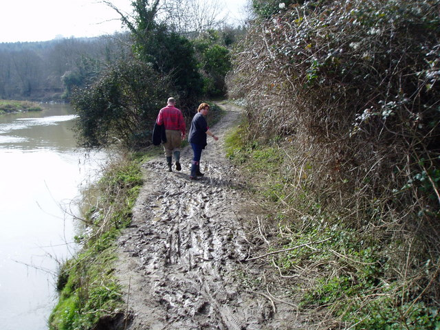 Navigating a muddy Monarch's Way