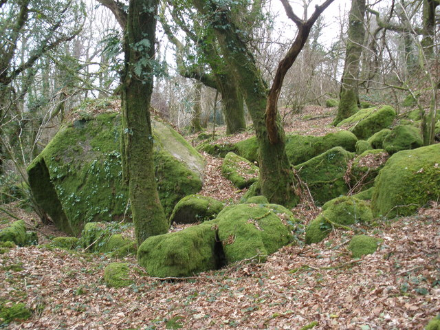 Moss-covered rocks, near Sharpitor