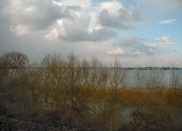 Springtime on the Ouse Washes
