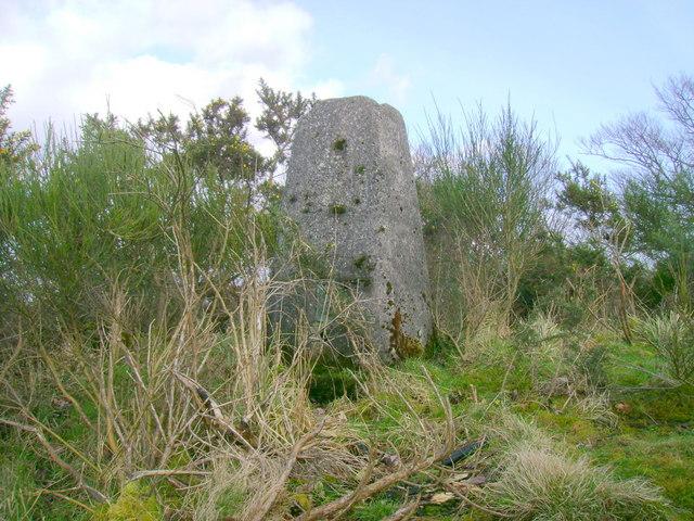 Highcraig Wood triangulation pillar