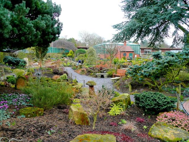 Ashwood Nurseries 2