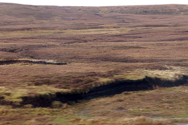 Moorland at Grimsetter, south of Cullivoe