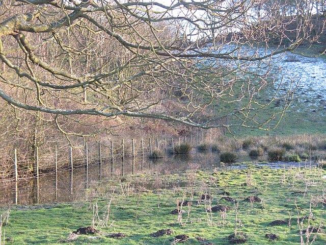 Wetland, Lathallan