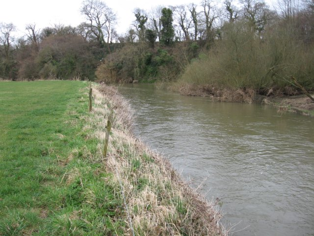 Bend on the Stour near Shapwick
