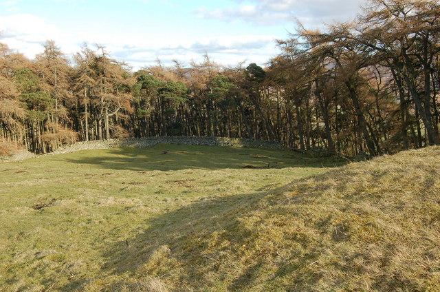 Settlement site, Hog's Knowe