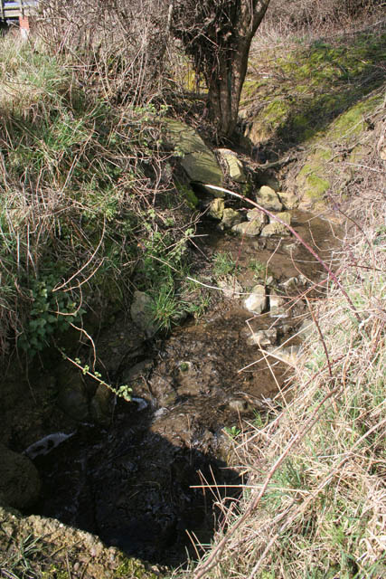 Stream to the south of the Nottingham Canal
