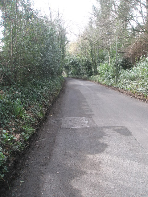 Mid section of Blendworth Lane