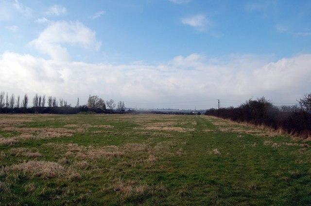 Field near Pickerels Farm