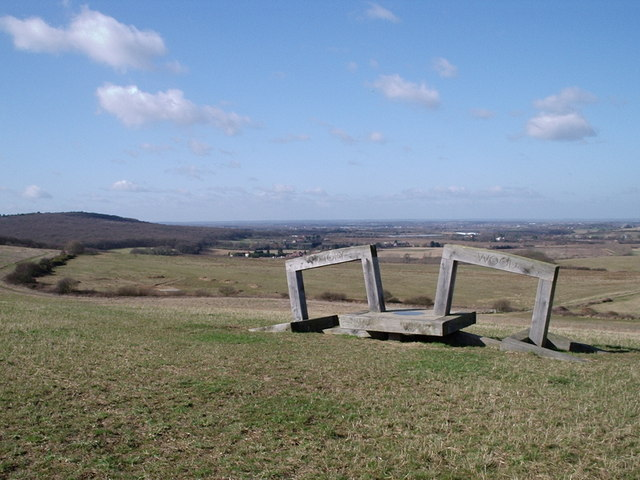 The Link Sculpture, Victory Wood