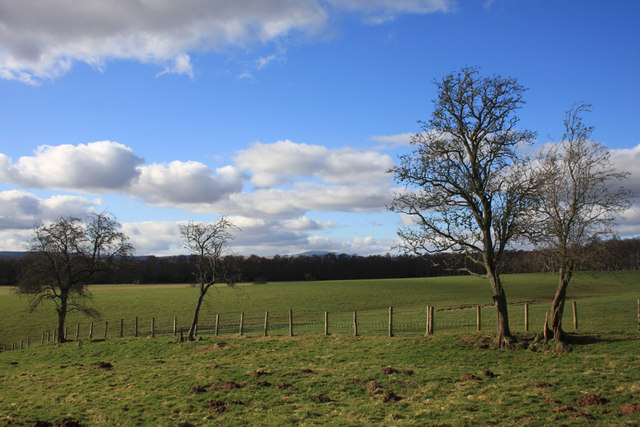 Fields near Auchenroddan