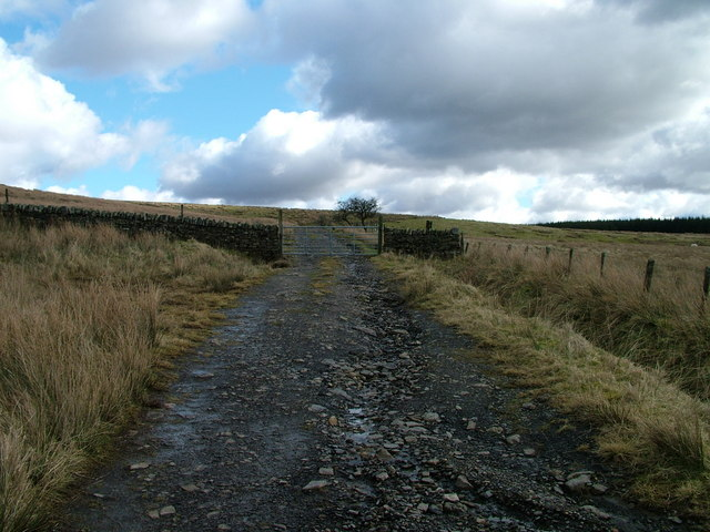 Gated path near White Preston