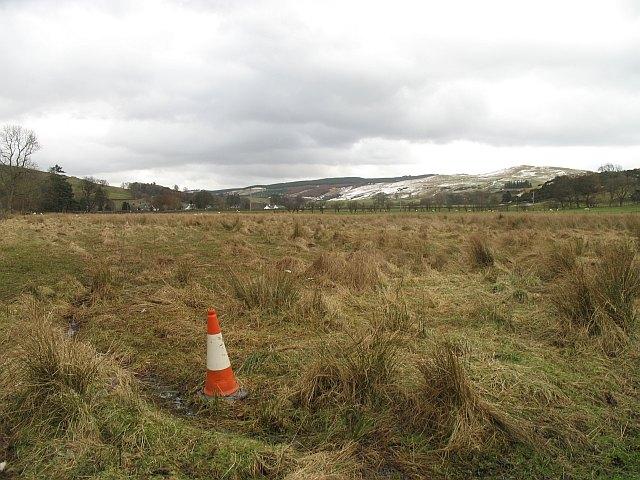 Wetland, Strathendrick