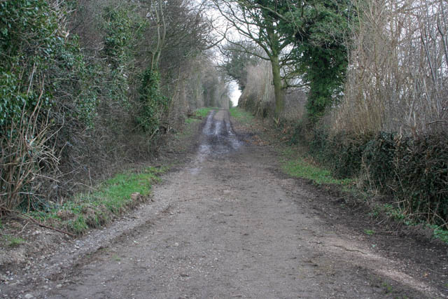 Track to Cossall