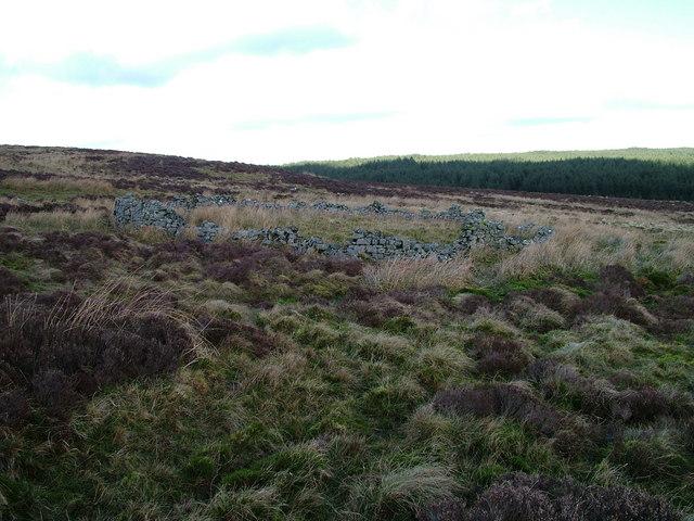 Sheepfold near Smuggy's Pike