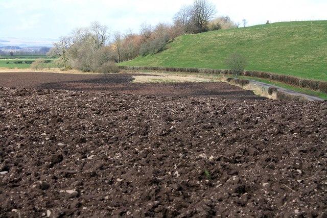 Ploughed field near Lockerbie