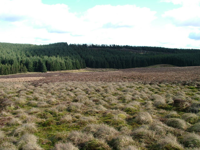 Looking down to Gair Burn