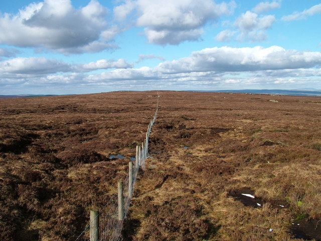 Fence between Sighty Crag and the 508m top