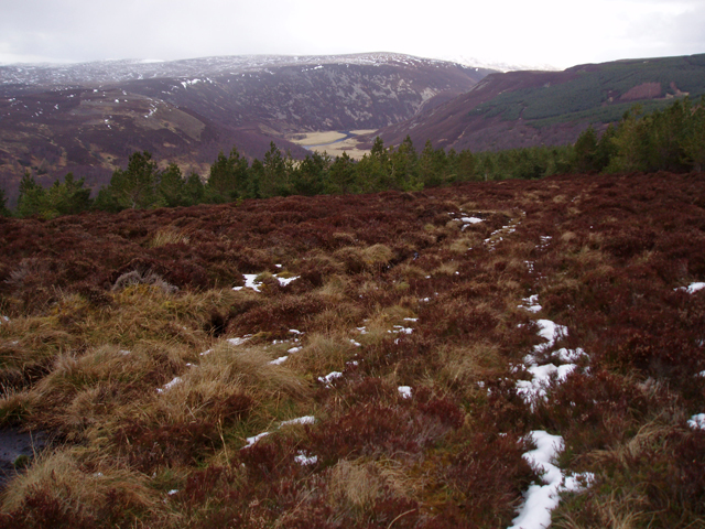 Boggy track on Tom a' Ghealagaidh