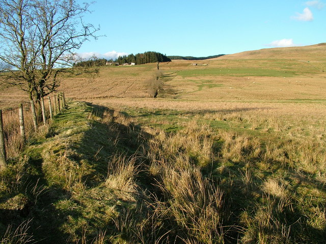 Across Crew Moor towards Crew Farm