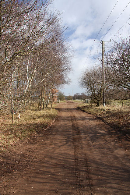Icknield Way near Icklingham