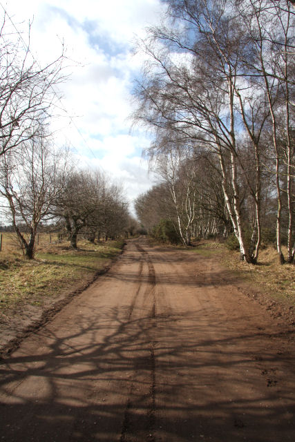 Icknield Way near Tuddenham