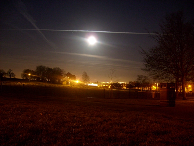 Mersey Park Moonlit