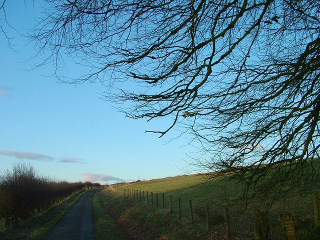 The road by Park Head
