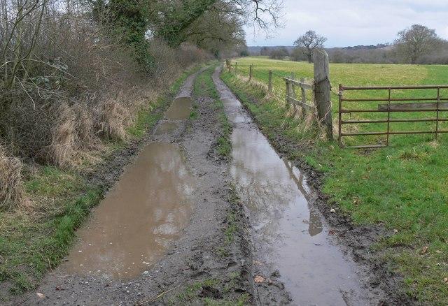Muddy track near Newtown Linford