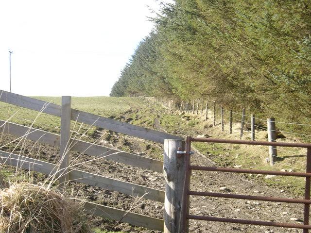 Track towards Craigdorney Farm