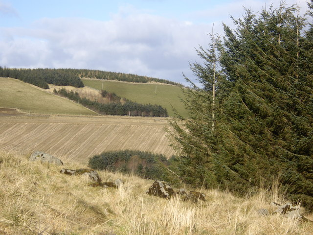 View towards Gallows Hill
