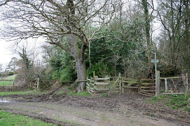 Entrance to Burleycoombe Wood above Pynes Weir