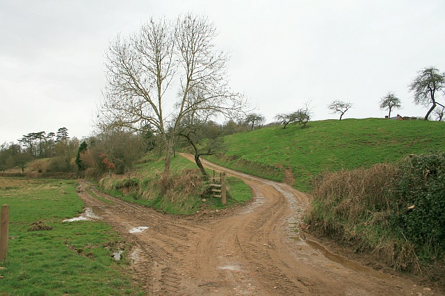 Track to Beer Cottages