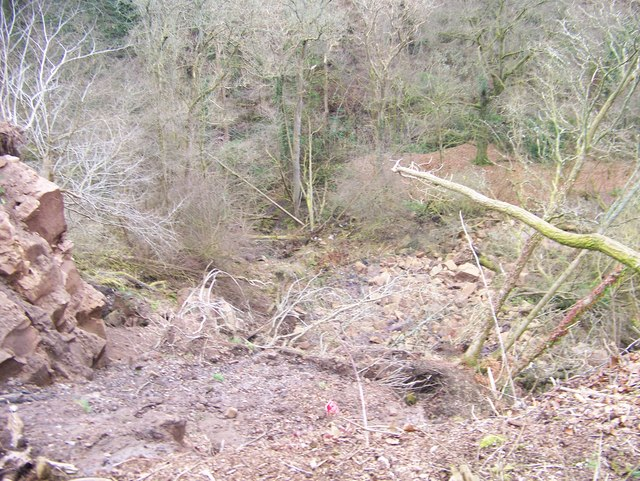 Looking down the landslide to the Avon Water at Chatelherault Country Park