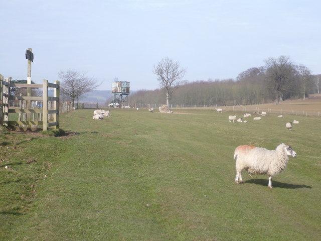 Eastwell Park near Ashford