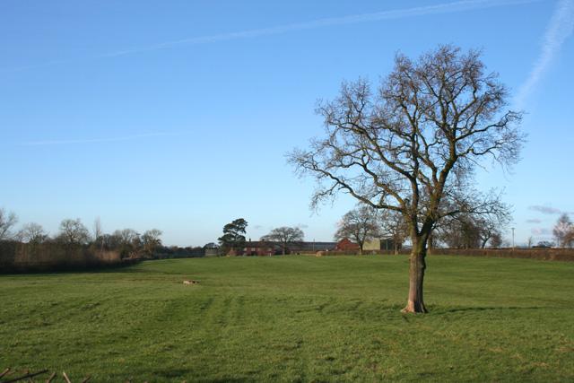 Farmland near Bank Farm, Burland
