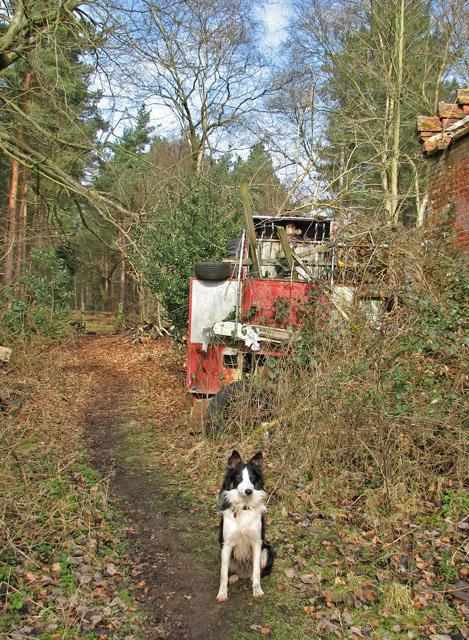 Path past Ling Park Farm