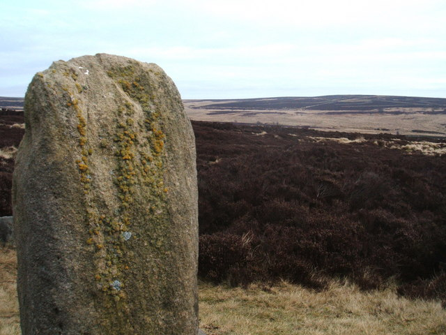 View from Lady's Cross, Big Moor