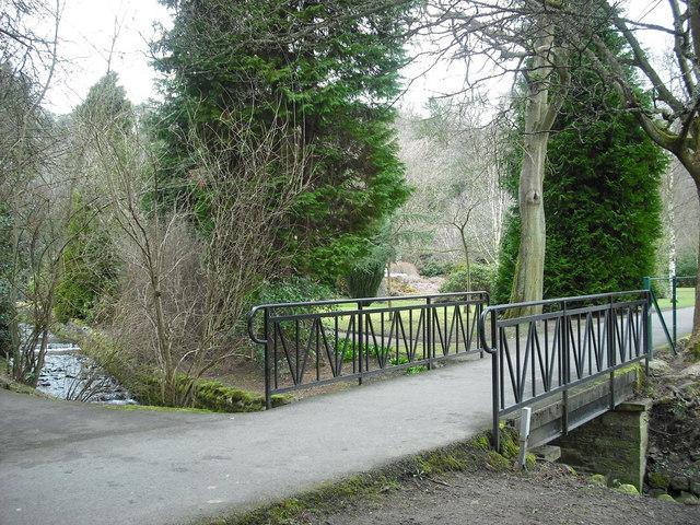 Footbridge over The Wilton Burn