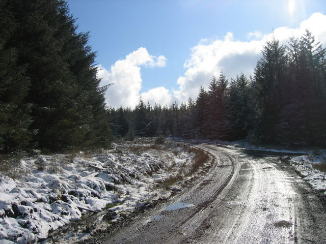 Forest Road ( marked on OS Map)