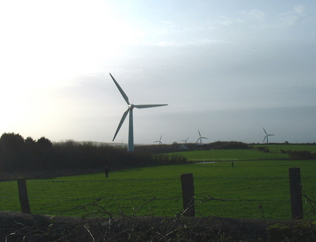 Guns at the ready -a pheasant shoot in the shadow of the wind turbines at Trysglwyn