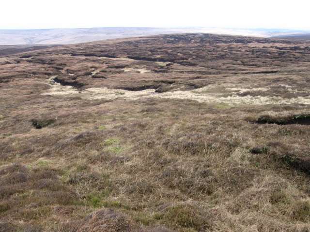 Bleaklow Meadows to Round Hill
