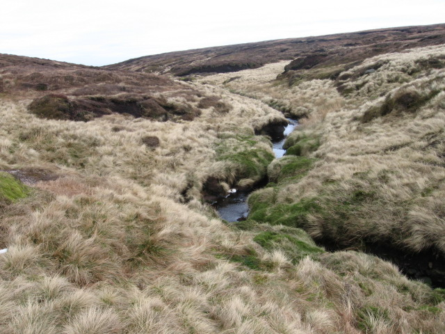 Middle Black Clough