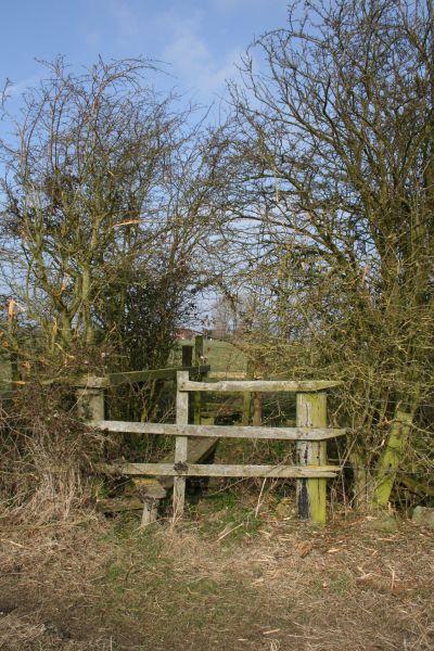 Footbridge over the ditch