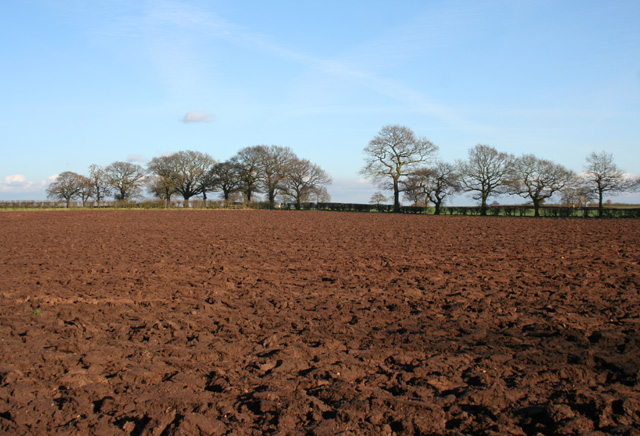 Arable field adjacent to canal