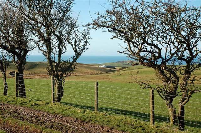 Towards North Ballaird