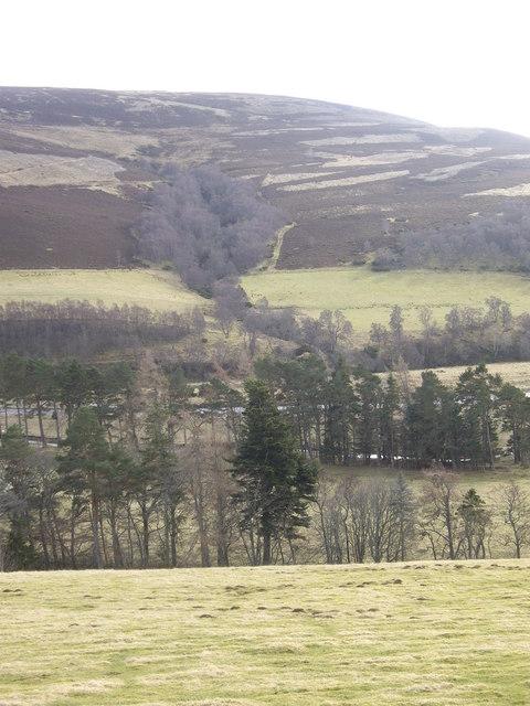 View towards Burn of Bushroot